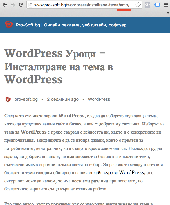 WordPress AMP Preview
