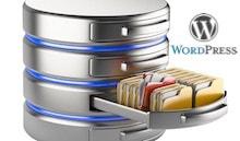 Как да изключим разширение от базата данни в WordPress